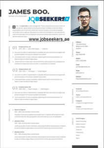 Online Professional Resume Writing Services Dubai